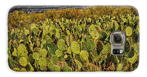 Galaxy S6 Case featuring the photograph A Prickly Pear View by Mark Myhaver