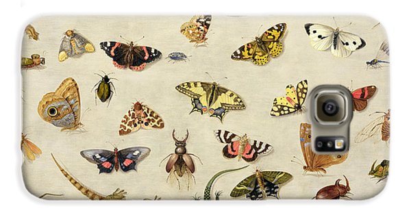 Ant Galaxy S6 Case - A Study Of Insects by Jan Van Kessel