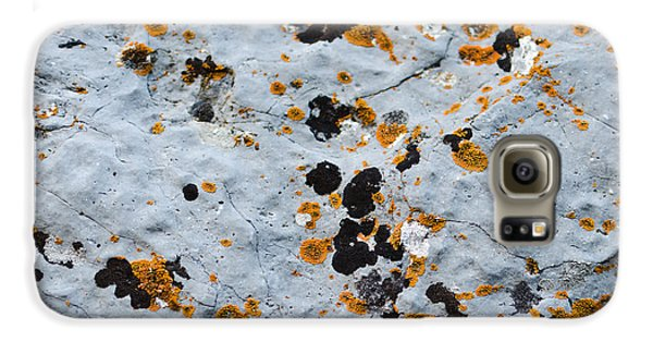 Abstract Orange Lichen 1 Galaxy S6 Case