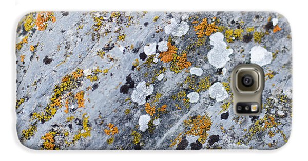 Abstract Orange Lichen 2 Galaxy S6 Case