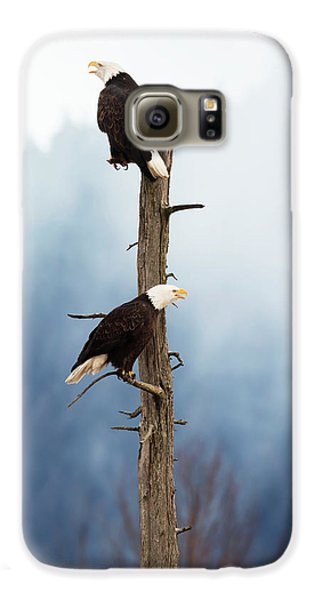 Adult Bald Eagles  Haliaeetus Galaxy S6 Case by Doug Lindstrand