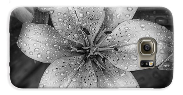 Lily Galaxy S6 Case - After The Rain by Scott Norris