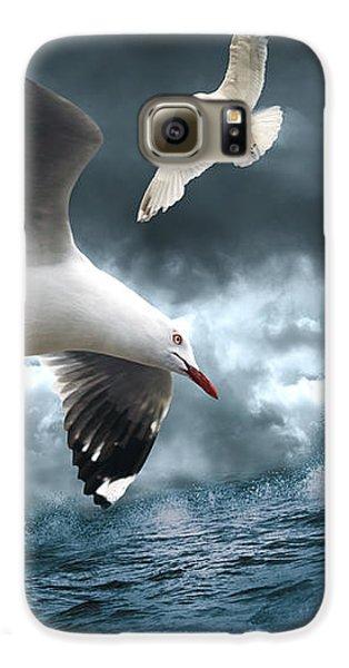 Albatross Galaxy S6 Case
