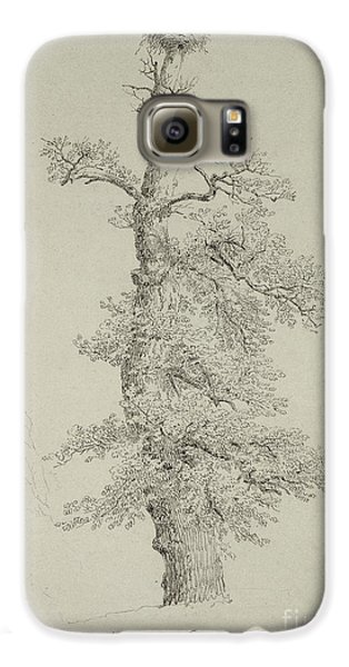 Stork Galaxy S6 Case - Ancient Oak Tree With A Storks Nest by Caspar David Friedrich
