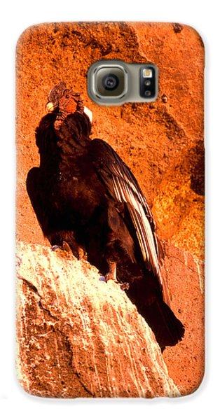 Andean Condor Galaxy S6 Case