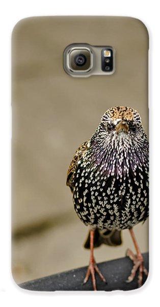Angry Bird Galaxy S6 Case