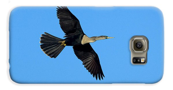 Anhinga Female Flying Galaxy S6 Case