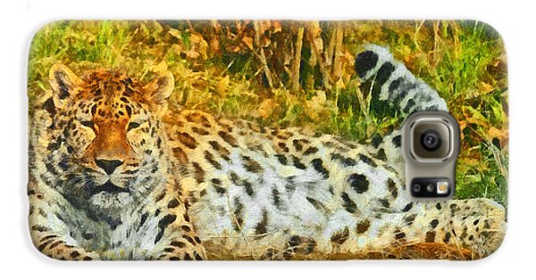 Asian Snow Leopard Galaxy S6 Case