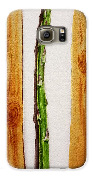 Asparagus Galaxy S6 Case - Asparagus Tasty Botanical Study by Irina Sztukowski