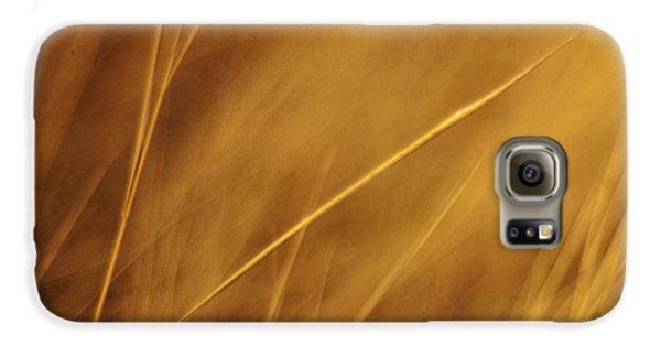 Aurum Galaxy S6 Case by Priska Wettstein