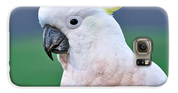 Australian Birds - Cockatoo Galaxy S6 Case by Kaye Menner