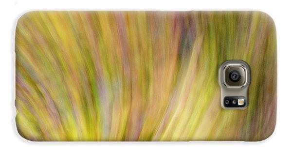 Autumn Azaleas 4 Galaxy S6 Case