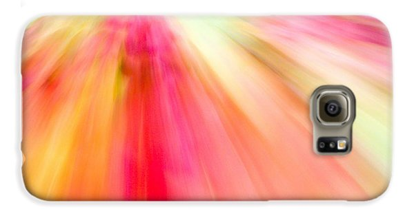 Autumn Foliage 10 Galaxy S6 Case