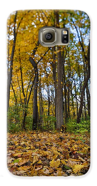 Galaxy S6 Case featuring the photograph Autumn Is Here by Sebastian Musial