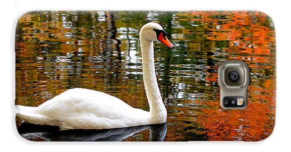 Autumn Swan Galaxy S6 Case by Lourry Legarde