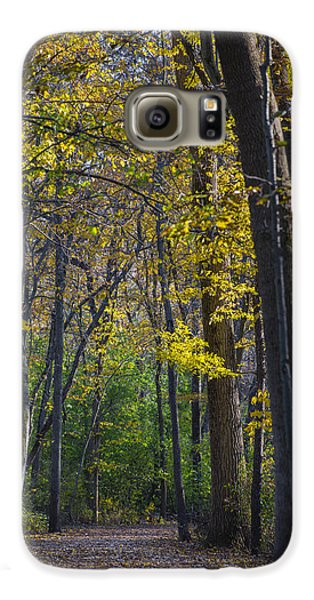 Galaxy S6 Case featuring the photograph Autumn Trees Alley by Sebastian Musial