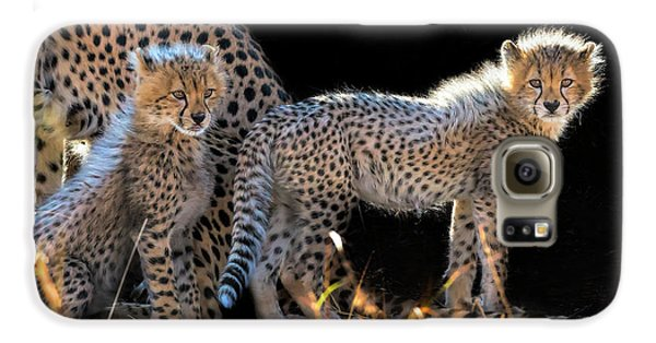 Baby Cheetahs Galaxy S6 Case