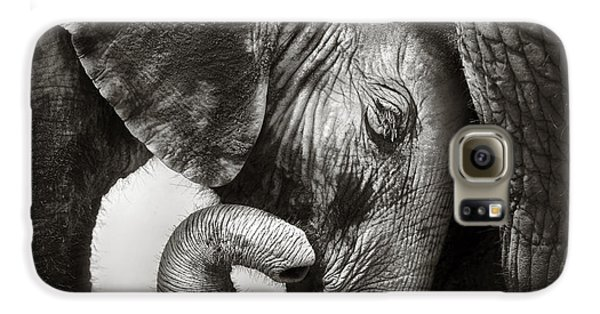 Baby Elephant Seeking Comfort Galaxy S6 Case