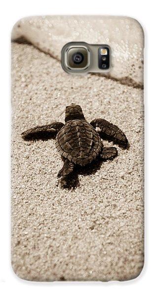 Baby Sea Turtle Galaxy S6 Case