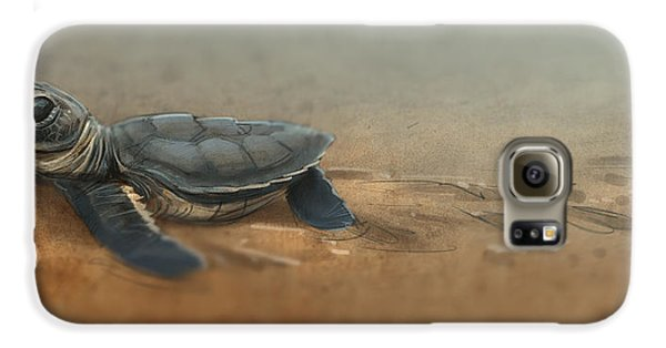 Baby Turtle Galaxy S6 Case by Aaron Blaise