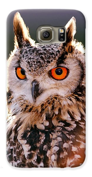 Backlit Eagle Owl Galaxy S6 Case by Roeselien Raimond