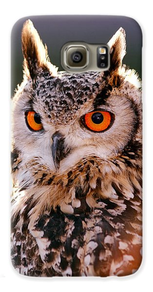 Owl Galaxy S6 Case - Backlit Eagle Owl by Roeselien Raimond