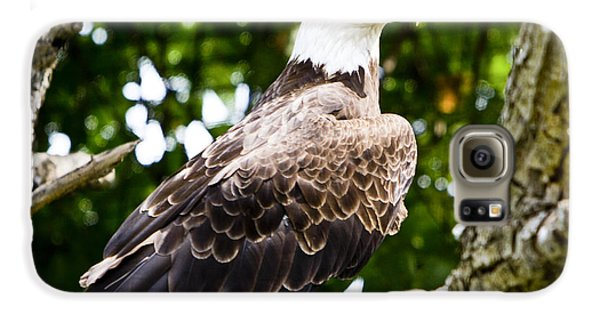 Galaxy S6 Case featuring the photograph Bald Eagle by Ricky L Jones
