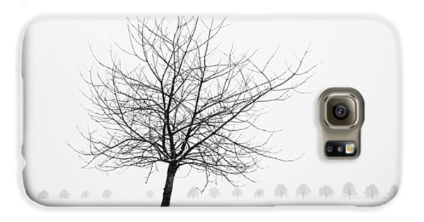 Bare Tree In Winter - Wonderful Black And White Snow Scenery Galaxy S6 Case