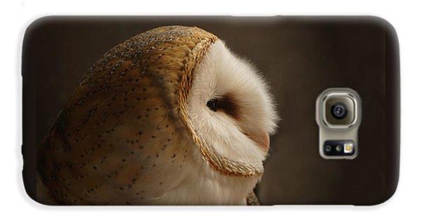 Owl Galaxy S6 Case - Barn Owl 3 by Ernie Echols