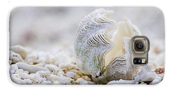 Beach Galaxy S6 Case - Beach Clam by Sean Davey