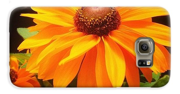 Beautiful Galaxy S6 Case - Beautiful Flower #iphone5 #instagram by Scott Pellegrin