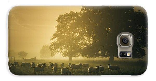 Before Dawn Gathering Galaxy S6 Case by Chris Fletcher