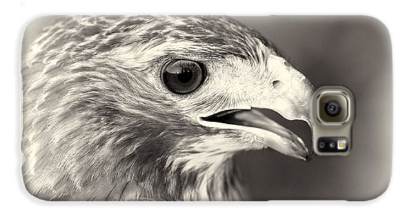 Bird Of Prey Galaxy S6 Case by Dan Sproul