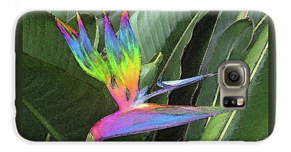 Bird Ow  Paradise Galaxy S6 Case