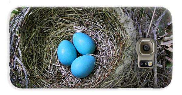 Birds Nest American Robin Galaxy S6 Case by Christina Rollo
