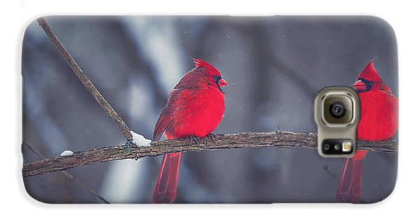 Birds Of A Feather Galaxy S6 Case by Carrie Ann Grippo-Pike