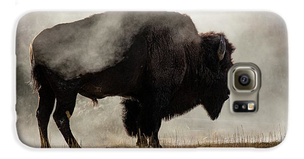 Bison In Mist, Upper Geyser Basin Galaxy S6 Case