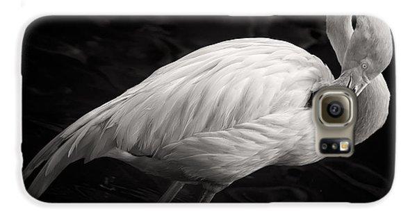 Black And White Flamingo Galaxy S6 Case