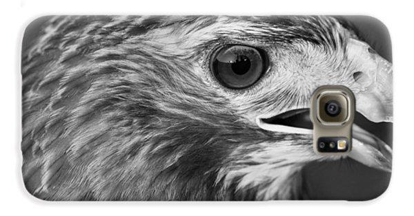 Black And White Hawk Portrait Galaxy S6 Case by Dan Sproul