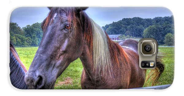 Black Horse At A Fence Galaxy S6 Case