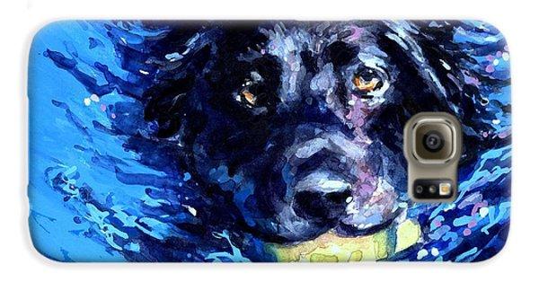 Black Lab  Blue Wake Galaxy S6 Case by Molly Poole