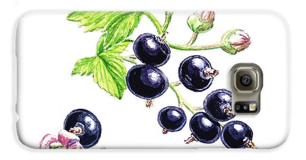 Galaxy S6 Case featuring the painting Blackcurrant Botanical Study by Irina Sztukowski