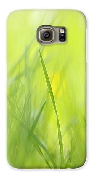 Blades Of Grass - Green Spring Meadow - Abstract Soft Blurred Galaxy S6 Case