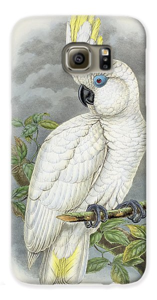 Blue-eyed Cockatoo Galaxy S6 Case by William Hart