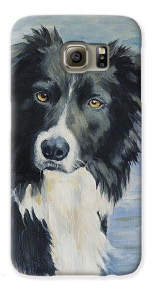 Border Collie Portrait Galaxy S6 Case