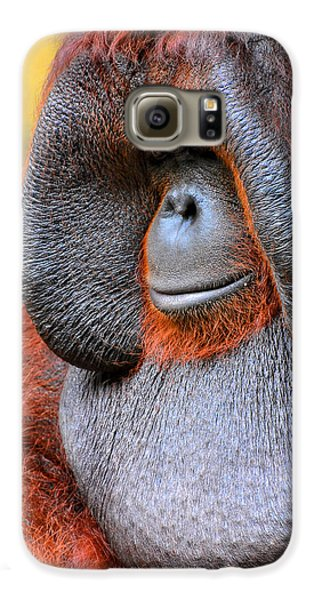 Bornean Orangutan Vi Galaxy S6 Case by Lourry Legarde