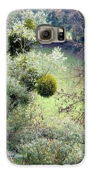 Mistletoe Ball Galaxy S6 Case