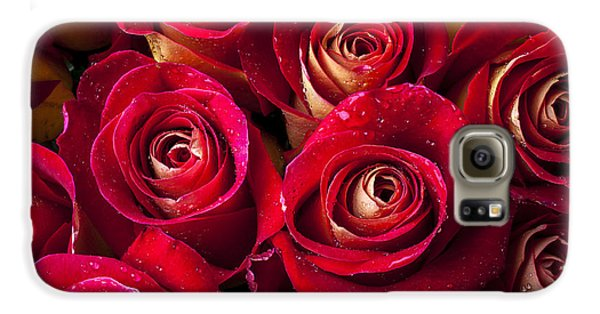 Rose Galaxy S6 Case - Boutique Roses by Garry Gay