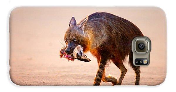 Bat Galaxy S6 Case - Brown Hyena With Bat-eared Fox In Jaws by Johan Swanepoel