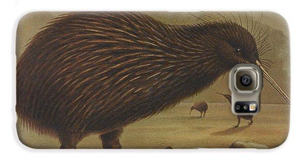 Brown Kiwi Galaxy S6 Case